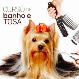 Curso Banho e Tosa Online