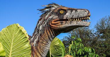 10 Razões Pelas Quais Os Dinossauros Continuam A Nos Fascinar